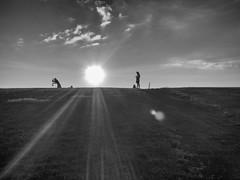 Refraction (michelkalff) Tags: sunset bw sun blackwhite refraction ameland michelkalff