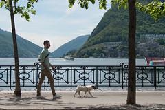Day 123 - Synchronized step (R@ffi) Tags: walking lugano lungolago passeggiata