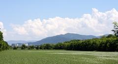 Rieselfeld landscape II (tillwe) Tags: blue green clouds landscape freiburg blackforest tillwe rieselfeld 201605