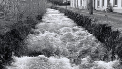 Schnenbach stream, Todtnau (the last don) Tags: blackandwhite bw monochrome germany stream schwarzwald todtnau