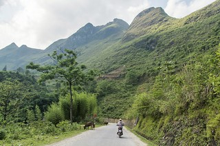 bao lac - vietnam 48