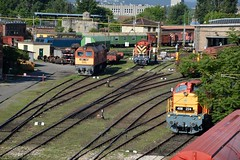 2016_Ferencvros_2116 (emzepe) Tags: railroad station yard train tren hungary budapest engine eisenbahn railway zug bahnhof loco class series locomotive bahn railyard ungarn classification 2016 lokomotiv hongrie nyr jnius vonat plyaudvar vast ferencvros ferencvrosi mozdony sorozat lloms vastlloms sorozat plyaszm
