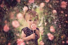 Baby doll ( Agnes PERROT) Tags: pink baby flower girl rose agnsperrot