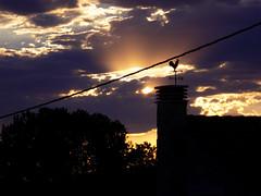 Ante la inmensidad (helenabalbas) Tags: blue light sunset summer sky orange sun holiday flower tree sol nature azul arbol gallo flora nikon natural pueblo natura cable cielo nubes naranja clounds hb veleta loght