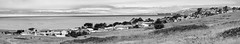 Ranch Homes I (Joe Josephs: 2,650,890 views - thank you) Tags: california blackandwhite walking hiking pinetrees californiacoast fineartphotography blackandwhitephotography californiacentralcoast cambriacalifornia travelphotography californialandscape pineforests outdoorphotography fineartprints fiscaliniranch fiscaliniranchpreserve