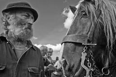 A Waidler and his horse (explored) (ramerk_de) Tags: horses bayerischerwald pfingstritt badktzting zugleistungswettbewerb