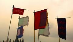 (eagleshamd) Tags: scotland festivals flags belladrum