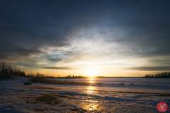 The path is lit (Kasia Sokulska (KasiaBasic)) Tags: winter sunset sky canada color beauty clouds landscape nationalpark alberta elkisland astotinlake