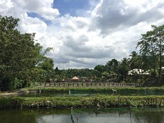 Dolores Farm Resort in Polomolok, South Cotabato, Philippines (ToGa Wanderings) Tags: trees green clouds hotel asia warm philippines culture resort southern tropical environment suburb southeast lush mindanao polomolok generalsantos southcotabato doloresfarm