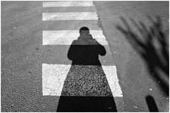 2 - Alfortville Rue du Gnral Leclerc Ombre sur demi passage piton (melina1965) Tags: light blackandwhite bw sol nikon ledefrance noiretblanc pavement lumire april avril valdemarne lightandshade 2015 alfortville sols ombreetlumire d80
