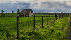 Spring on the Palouse (rbelstad) Tags: palouse wheat fence clouds oldhouse