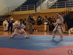 stefanou_15_5_2016_knockdown_156