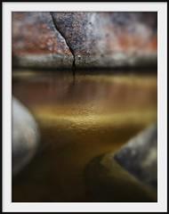 tidal pool (Andrew C Wallace) Tags: blur lensbaby creek river rocks dof australia olympus victoria lichen omd tidalriver tiltshift wilsonspromontory m43 em5 nikon50mmf14 microfourthirds tilttransformer