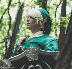DSC_1798 (superheroblues) Tags: link zelda legendofzelda
