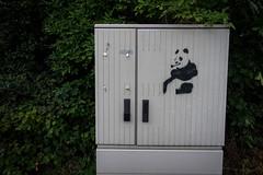 stencil - hamburg, steinwerder (urbanpresents.net) Tags: street urban streetart art graffiti stencil panda hamburg urbanart steinwerder kersavond urbanpresentsnet