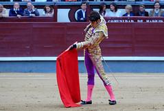 Talavante (Fotomondeo) Tags: madrid espaa spain bull bullfighter toros bullfight toro bullring matador torero plazadetoros corridadetoros lasventas fujifilmxm1