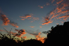 Tuesday (dustaway) Tags: autumn sundown australia nsw cloudscape sunsetclouds lismore northernrivers australianweather