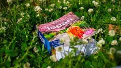 Lost in a good book  ------------------------------------------------------- #goodbook #lonelyplanet #travel #explore #gotravel #japan #shotoftheday  #asia #travelbug  #backpack #doyoutravel #shotoftheday #500px #natgeo #flickr #health #picoftheday #insta (JA Knight) Tags: travel sunset green nature japan book spring asia flickr bokeh wanderlust explore health backpack lonelyplanet travelbug picoftheday natgeo travelphotography shotoftheday goodbook wonderlust 500px exploringtheworld gotravel instaphoto instamood doyoutravel
