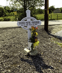 Goals, Dreams, Future? (EX22218) Tags: railroad flowers trees green yellow fence crossing accident pole tip tragic telegraph federal railroadcrossing deadly corruption csx deaths htt funding misuse operationlifesaver bullittcounty kipda rhpd eastbluelickroad