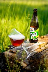 DSC_8326 (vermut22) Tags: beer bottle beers brewery birra piwo biere beerme beertime browar butelka
