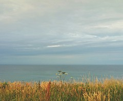 """A """"double Horizon """" sea from yesterday evening, the little dot in the middle is an oil rig ... Sea Northsea Norfolk Seascape Clouds North Sea Illusion Weird Water Cliff Grass   (Almena14) Tags: horizon sea northsea norfolk seascape clouds illusion weird water cliff grass"""