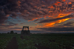 Old Tractor On A Potato Field (k009034) Tags: 500px vehicle copy space finland matkaniva oulainen agriculture clouds countryside dramatic sky evening fields nature night no people old potato rural summer sunset tractor teamcanon copyspace dramaticsky nopeople