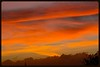 West Auckland Sunset (Zelda Wynn) Tags: pink sunset red orange weather auckland cloudscape sunsetclouds troposphere zeldawynnphotography