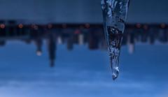 Microcosm (Philocycler) Tags: macro reflection ice standing icicle ordinary chicagoskyline chicagoist ordinaryobject macromonday takesomethingordinary