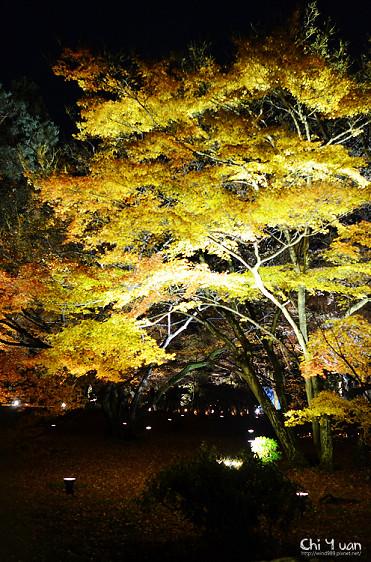 嵐山寶嚴19.jpg