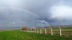 Spring begins (drstar.) Tags: rain spring rainbow flickr fields flickrturkey