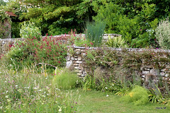 Along a wall (Henk M gardenphotoblog) Tags: england garden kent tuin christopherlloyd greatdixter nimg1848