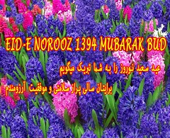 EID-e NOROOZ MUBARAK BUD (Kombizz) Tags: flowers color love apple beauty barley persian iran sweet wheat eid persia health garlic tradition rebirth redfish affluence patience quran koran sib newyearcelebration norooz norouz nowruz farsi haftseen zoroastrian sabzeh samanu 2015  mungbean 1394 wheatgerm mungbeansprouts nooruz nawroz lentilsprouts  wheatsprouts senjed serkeh  sevenss  kombizz barleysprouts persiantradition haftseentable sevenitems  fasilanguage somq    duaaenawroz eidenoroozmubarakbud
