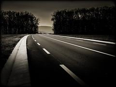 Sur la route (Clydomatic) Tags: nb route arbres soir