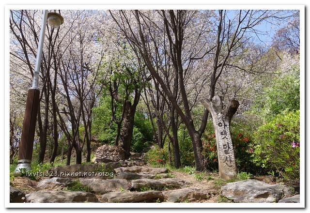 일산호수공원56
