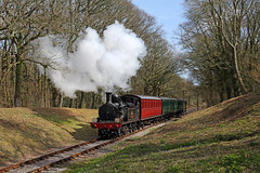 Branch Line (Treflyn) Tags: wood london train photo woods adams time south events o2 neil rail railway loco photographic class steam line isleofwight western timeline locomotive cave isle towards wight charter w24 iow steams wootton lswr calbourne 044t