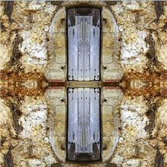 2016-05-17door (april-mo) Tags: door france art collage architecture mirror experimental symmetry flip symmetrical porte loire symétrie narrowdoor experimentaltechnique