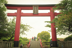 IMG_2972 (t.kunikuni) Tags: japan tokyo shrine    kameido kotoku   kameidotenjin