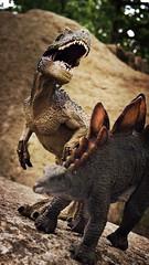 thinning the herd 3 (Chris Blakeley) Tags: seattle toys dinosaur stegosaurus papo allosaurus hipstamatic