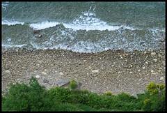 SEAGULL'S EYE PERSPECTIVE (LitterART) Tags: coast slovenia fujifilm piran slowenien kste istria istra vogelperspektive birdseyeperspective istrtien