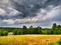 _spring and rain_ (_markotoro_) Tags: nature naturaleza field clouds cloud spring meizu serbia srbija kragujevac walk priroda umarice green