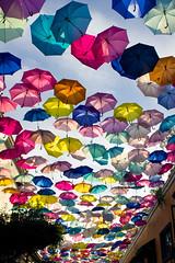 Color Rain (Max Valenzuela) Tags: travel vacation colors umbrella mexico guadalajara jalisco colores sombrilla paraguas tlaquepaque gdl