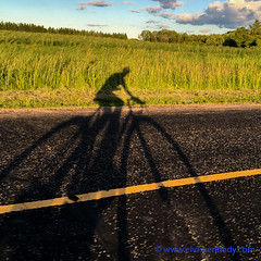 100 Days of Summer #8 - Shadowman (elviskennedy) Tags: road travel sunset shadow summer sky green field grass bike wheel wisconsin clouds speed fun bicycling cycling evening washington cyclist ride ditch farm wheat elvis fast jackson riding frame brakes crops hay outline colnago wi kennedy handlebars tar blacktop iphone shadowman bluegill c50 ozaukee kirchhayn wwwelviskennedycom elviskennedy 6splus 6s6s