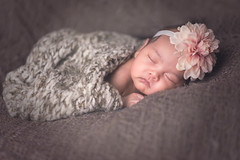baby-2 (dewspliff) Tags: life new boy sleeping portrait baby white cute girl beautiful beauty face childhood closeup studio happy person one kid healthy infant funny soft babies child little sweet body sleep small innocent dream young adorable human newborn innocence care cheerful