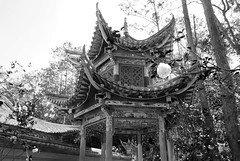 517 Thonghai (farfalleetrincee) Tags: china travel bw tourism nature temple asia buddhism adventure guide yunnan  tonghai  xiushanmountain