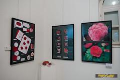 "Udruga ljubitelja kamelija, Izložba kamelija 2015, Dodjela nagrada • <a style=""font-size:0.8em;"" href=""http://www.flickr.com/photos/101598051@N08/16711705789/"" target=""_blank"">View on Flickr</a>"