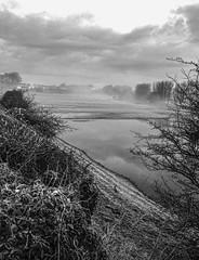 frosty mist (billdsym) Tags: blackandwhite misty frosty rx100 annanscotland