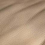 Le désert de cuir thumbnail