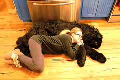 (crystal-lily) Tags: family trees friends portrait sun sunlight snow canada ski mountains castle dogs hat sunshine vintage newfoundland snowshoe fire frozen paw woods woodpecker fireplace scenery panda vermont skiing unitedstates antique scenic fluffy woody roadtrip lodge adventure icecream fox owl benandjerrys mansion paws slippers selfy largebreed selfies woodcabin
