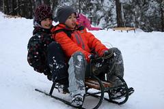 3 (ljubar) Tags: sneg divibare