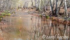 FB-8459 (Heesen-Images) Tags: arizona river landscape unitedstates sedona redrocks riverbank